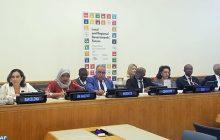 الأمم المتحدة: إبراز التزام المغرب من أجل تحقيق أهداف التنمية المستدامة لسنة 2030