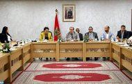 السيد عبيابة يستقبل وفدا من منظمات شبابية أجنبية